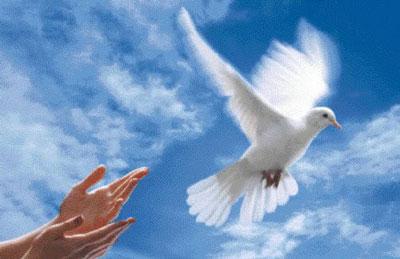 Chung sống hòa bình